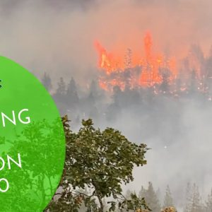 🔥Surviving The Obenchain Fire 2020 and All Fire Seasons🔥