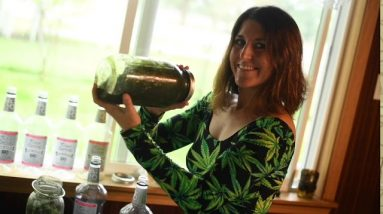 How To Make Full Extract Hemp Oil At Home!